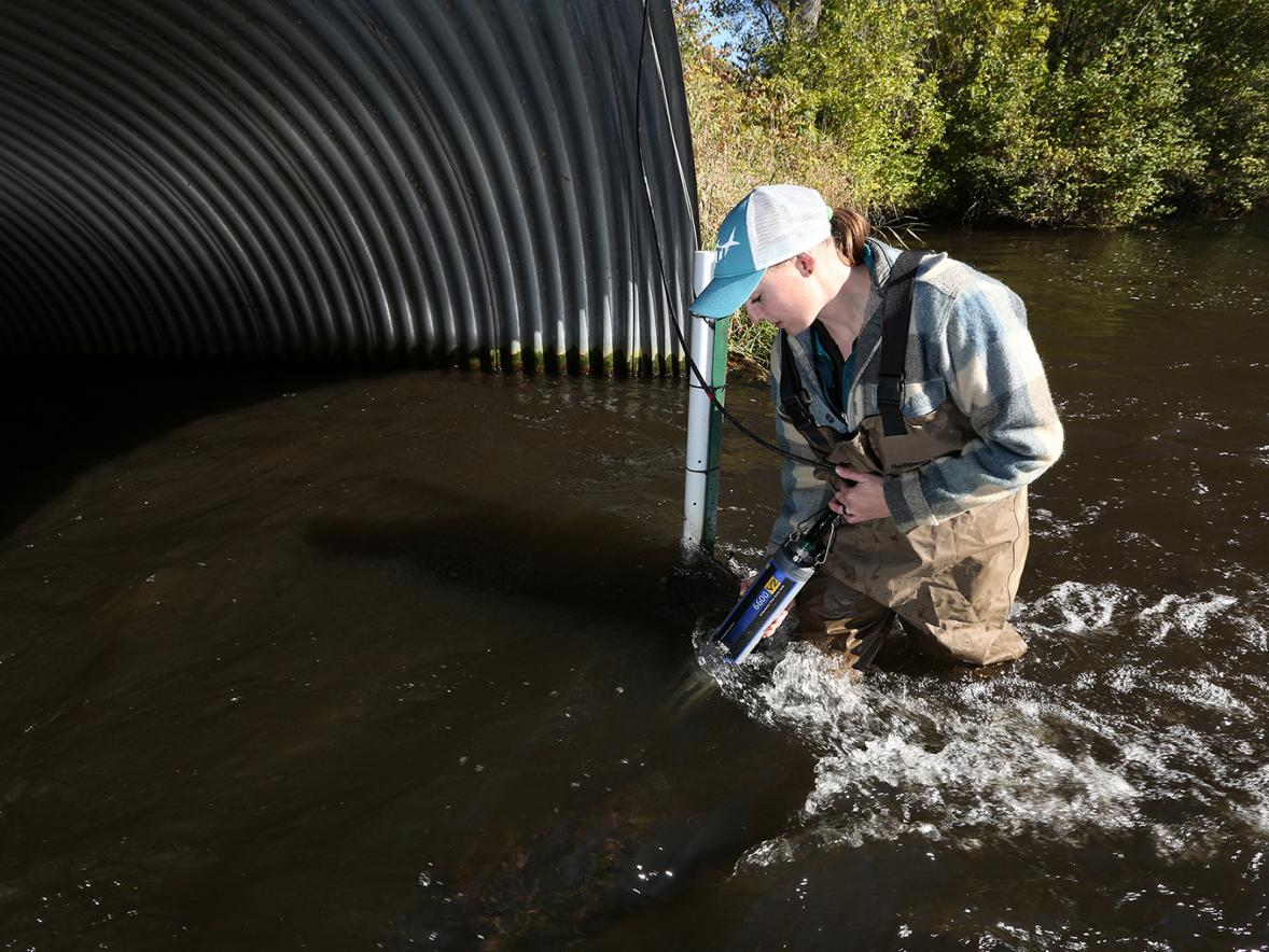 Heidi Lieffort takes water samples at Horse Creek.